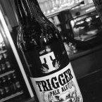 Trigger_craft_pivo